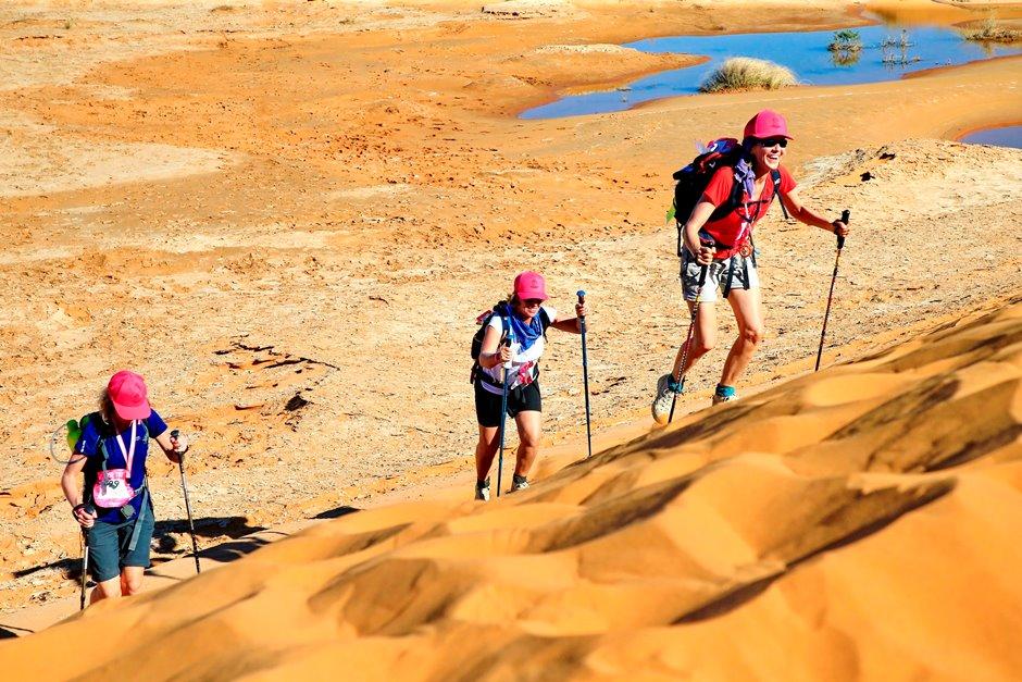 dans les dunes